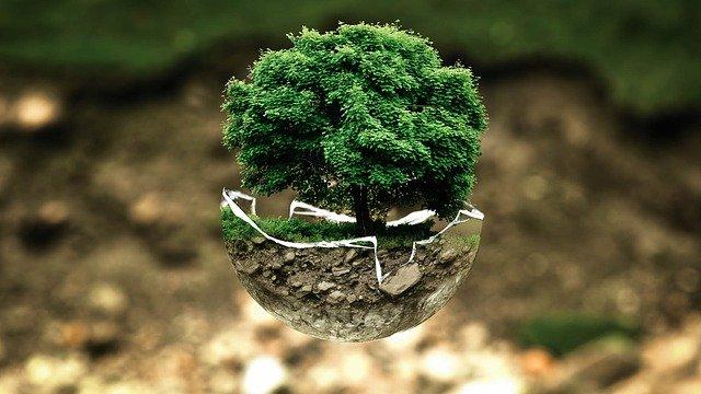 Communiquer par SMS, en faisant un vrai geste d'écologie pour notre planète.